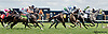 1st time by in the 1st turf race of the year at Delaware Park on 5/25/13.