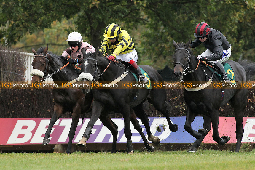 Thats The Deal ridden by Joe Cornwall (C) in jumping action in the Come Racing 26th October Fakenham Handicap Chase - Horse Racing at Fakenham Racecourse, Norfolk - 19/10/12 - MANDATORY CREDIT: Gavin Ellis/TGSPHOTO - Self billing applies where appropriate - 0845 094 6026 - contact@tgsphoto.co.uk - NO UNPAID USE