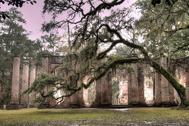 Old Sheldon Church Ruins near Beaufort South Carolina with Live Oaks and Spanish moss in the fog and rain High Dynamic Range