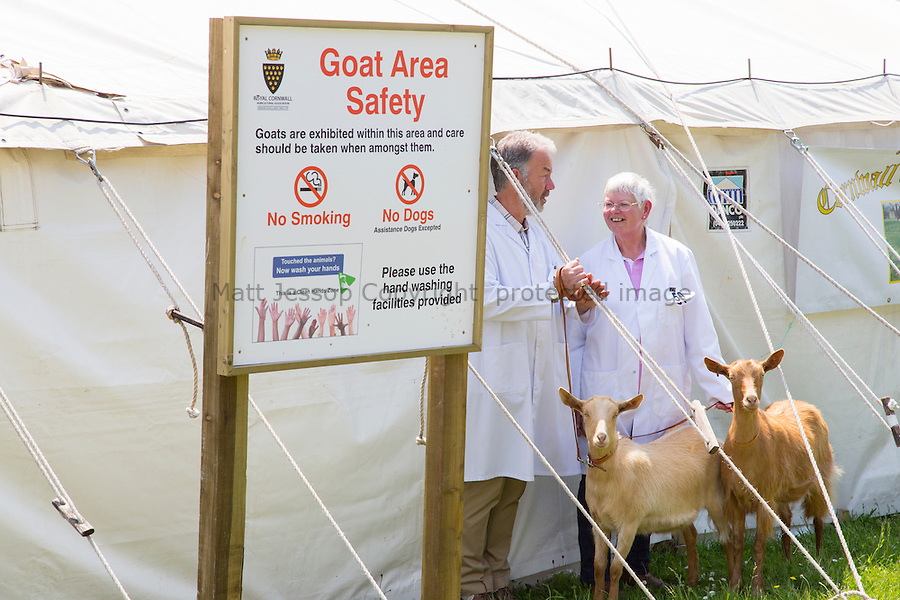Goat Area The Royal Cornwall Show
