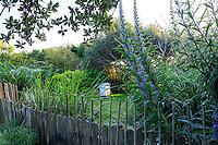 France, Manche (50), Vauville, Jardin botanique du château de Vauville, le rucher derrière la clôture