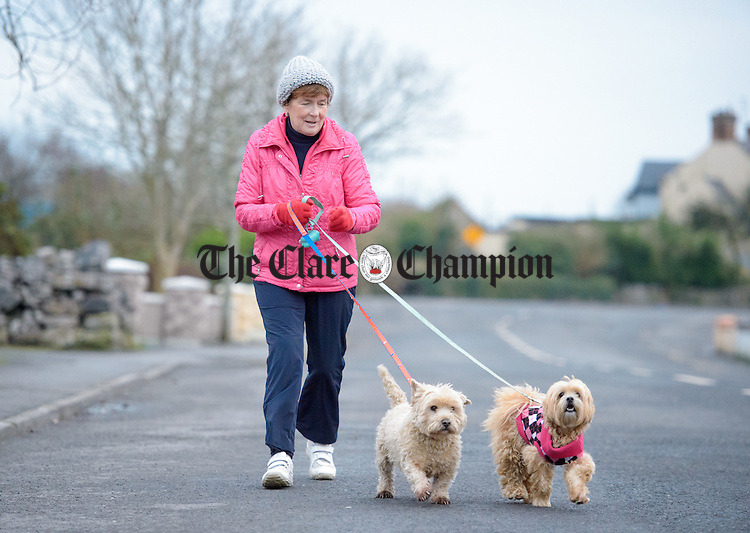 Maureen Mc Keogh out walking Cookie and  Mischa in Quin village. Photograph by John Kelly.
