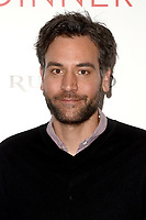 """LOS ANGELES - MAY 1:  Josh Radnor at the """"The Dinner"""" Los Angeles Premiere at the WGA Theater on May 1, 2017 in Beverly Hills, CA"""