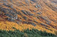 Autumn mountain pass near Mallaig, Scotland