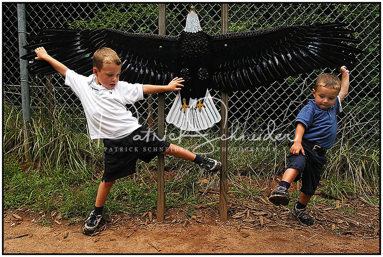 Two boys try to measure the length of their arms compared to the wingspan of an eagle at the Carolina Raptor Center in Huntersville, NC. Model released.