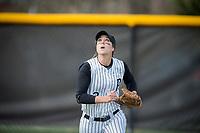Pfeiffer University Athletics