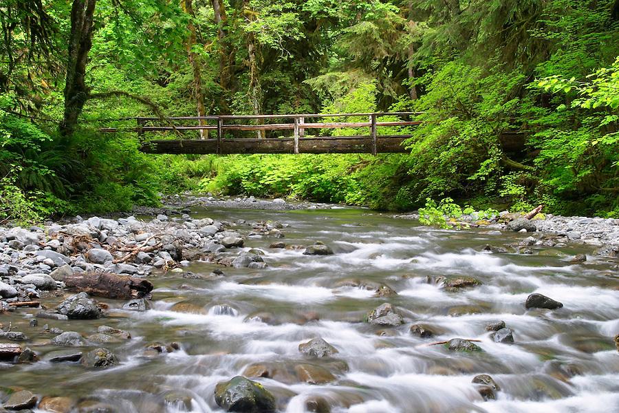 Wooden bridge over Barnes Creek, Olympic National Park, Olympic Peninsula, Clallam County, Washington, USA
