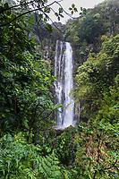 Wailua Falls, along the road to Hana, Maui.