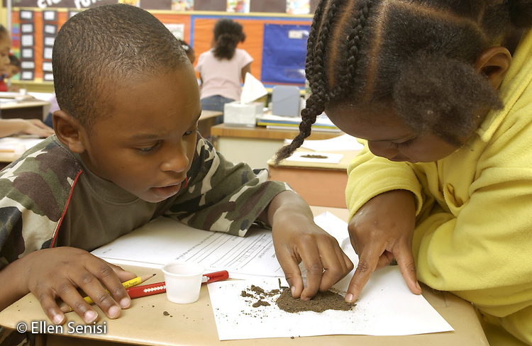 MR / Schenectady, NY.Yates Arts-in-Education Magnet Schl (urban elementary schl) Grade 2 students (7, African-American) work cooperatively and examine soil sample before recording results during science lesson. Increasingly, hands-on activities are  incorporated into the elementary school science curriculum to motivate students and to improve learning. MR: AC-g2f Rob10 Bra7..©Ellen B. Senisi