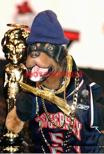 Triumph the Insult Comic Dog