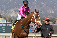 ARCADIA, CA  FEBRUARY 24: #4 Conquest Tsunami, a survivor of the San Luis Rey fire, gets a pat from Victor Espinoza, after winning the  Daytona Stakes (Grade lll) on February 24, 2018, at Santa Anita Park in Arcadia, CA. (Photo by Casey Phillips/ Eclipse Sportswire/ Getty Images)