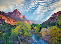 Fall color and Virgin River. Zion National Park, Utah. Sky has been added