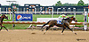Devil's Blush winning at Delaware Park racetrack on 7/14/14