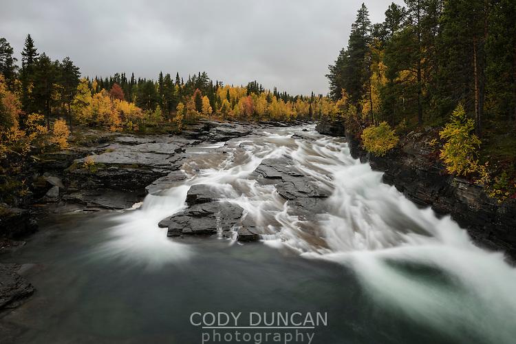 Vindelälven river flowing through autumn landscape near Ammarnäs, Lapland, Sweden