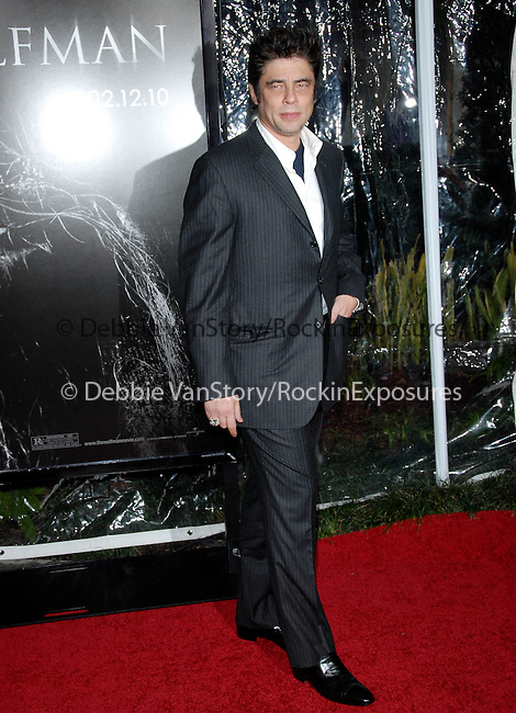 Benicio del Toro at the Universal Pictures L.A. Premiere of The Wolfman held at The Arclight Theatre in Hollywood, California on February 09,2010                                                                   Copyright 2009  DVS / RockinExposures