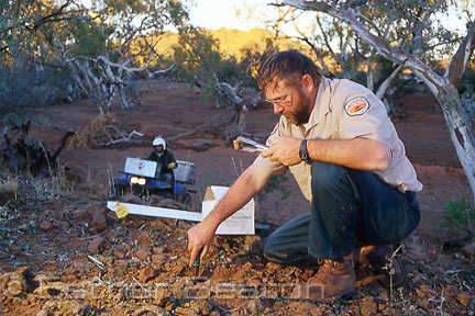 Pest control officers from National Parks service laying 1080 poison bait against foxes. Mutawintji National Park, western NSW