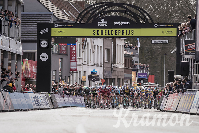 peloton passes the finish line in Schoten with 1 local lap to go<br /> <br /> 105th Scheldeprijs 2017 (1.HC)<br /> 1 Day Race: Mol &rsaquo; Schoten (BEL/202km)
