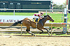 Wanda Nevada winning the 1st race of Delaware Park's 2009 meet on 4/25/09