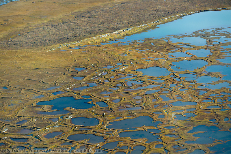 Geological feature of Polygons on the Arctic coastal plain of the Arctic National Wildlife Refuge, Alaska.