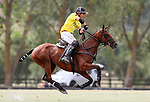 Horse Polo - NZ Open Semi-Finals, 21 February 2019