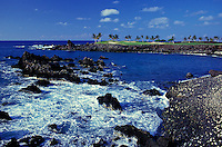 Big Island coastline with the golf course at the Mauna Lani Bay Resort in the background