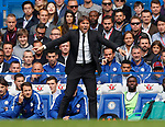 Antonio Conte manager of Chelsea during the premier league match at Stamford Bridge Stadium, London. Picture date 17th September 2017. Picture credit should read: David Klein/Sportimage