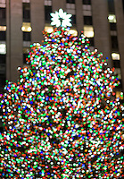 AVAILABLE FROM WWW.PLAINPICTURE.COM FOR LICENSING.  Please go to www.plainpicture.com and search for image # p5690251.<br />