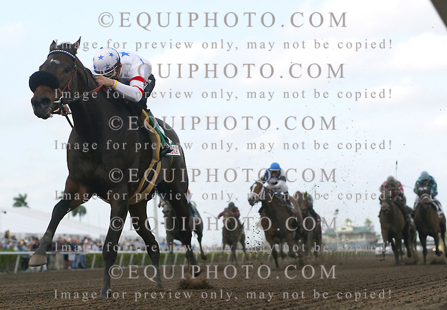 Shaggy Mane #5 with Mark Guidry riding won the Sunshine Millions Filly & Mare Sprint at Gulfstream Park.  Photo By Bill Denver/EQUI-PHOTO. 1/27/07