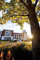 Union with sunset and gingko leaves<br />