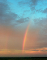 Rainbow over the South Plains, Texas.  We were heading for the Hill Country late one afternoon when this rainbow appeared.  I kept driving, focused on the long hours to come behind the wheel.  Finally Posie made me stop.  I'm glad she did!
