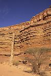 Israel, Negev desert, rock formations in Wadi Ardon .