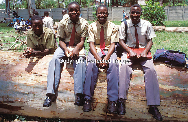 EDSECON19058.Education.  Secondary.  Zimbabwe.  Four black male students/ pupils in school uniform sitting in the playground, on a dead tree trunk.  School bags..©Per-Anders Pettersson / iAfrika Photos