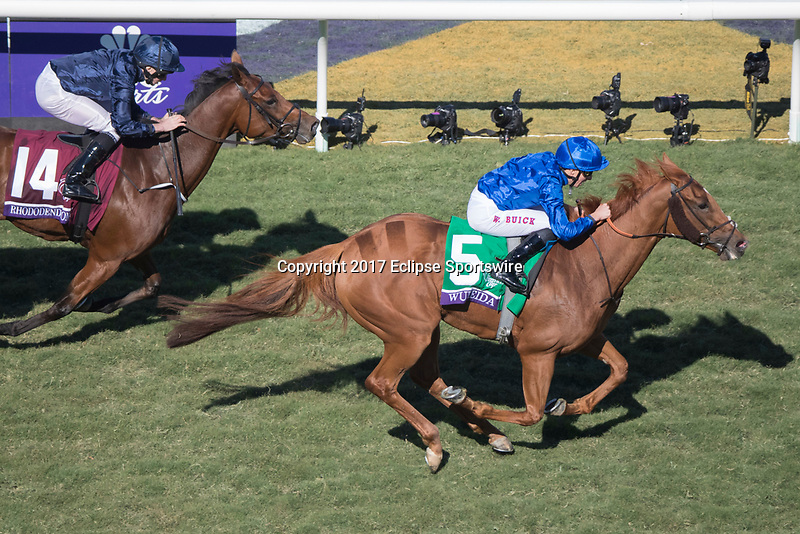 DEL MAR, CA - NOVEMBER 04: Wuheida #5, ridden by William Buick, while Rhododendron #14, ridden by Ryan Moore, tries to catch up during Breeders' Cup Filly & Mare Turf on Day 2 of the 2017 Breeders' Cup World Championships at Del Mar Thoroughbred Club on November 4, 2017 in Del Mar, California. (Photo by Ting Shen/Eclipse Sportswire/Breeders Cup)