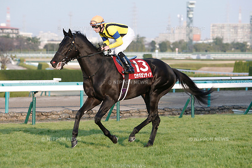 Rosa Gigantea ( Mirco Demuro),<br /> DECEMBER 26, 2015 - Horse Racing :<br /> Rosa Gigantea ridden by Mirco Demuro before the Hanshin Cup at Hanshin Racecourse in Hyogo, Japan. (Photo by Eiichi Yamane/AFLO)