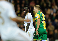 Bafetimbi Gomis of Swansea City looks dejected after failing to score during the Barclays Premier League match between Norwich City and Swansea City played at Carrow Road, Norwich on November 7th 2015