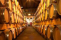 The old cellar for ageing wines in barrel with rows and rows of oak barriques Chateau de Pressac St Etienne de Lisse Saint Emilion Bordeaux Gironde Aquitaine France