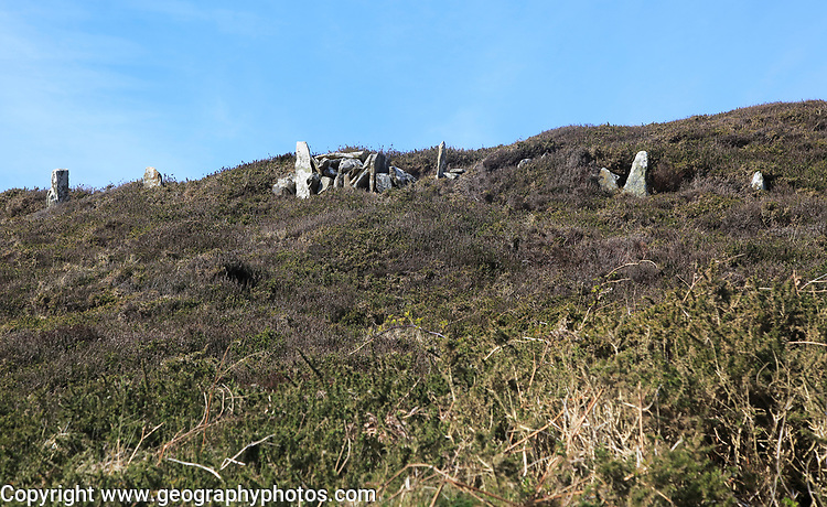 Standing stones field boundary wall, Cape Clear Island, County Cork, Ireland, Irish Republic