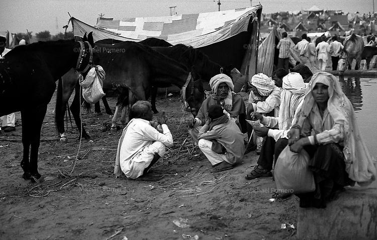 11.2010 Pushkar (Rajasthan)<br /> <br /> In the camp of the cattle fair near water basin.<br /> <br /> Sur le camp aux bestiaux pr&egrave;s du bassin d'eau.