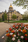 May 9, 2018; Main Building, spring 2018. Photo by Barbara Johnston/University of Notre Dame