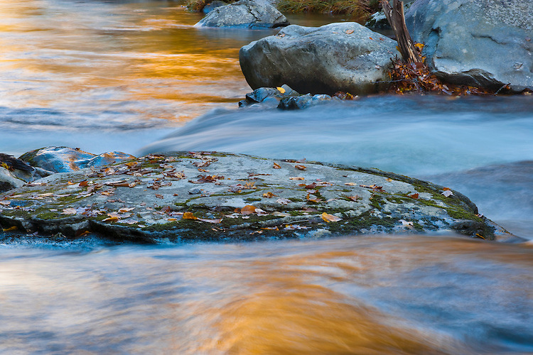 Fall color reflections on the Middle Prong of the Little River; Great Smoky Mountains National Park, TN