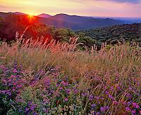 Shenandoah National Park, VA<br /> Sunrise crests at the ridges of the Shenandoah Mountains seen from Thornton Overlook
