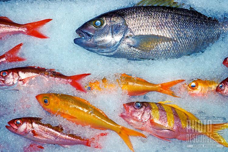 Various island fish on ice in hawaii