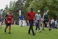 Tiger Woods (USA) and Tommy Fleetwood (ENG) head down 18 during round 4 of the World Golf Championships, Mexico, Club De Golf Chapultepec, Mexico City, Mexico. 2/24/2019.<br /> Picture: Golffile | Ken Murray<br /> <br /> <br /> All photo usage must carry mandatory copyright credit (© Golffile | Ken Murray)
