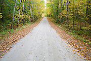 Gale River Forest - Autumn foliage along Gale River Road in the White Mountains, New Hampshire USA.