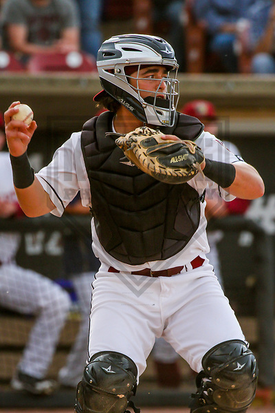 Wisconsin Timber Rattlers catcher Nathan Rodriguez (9) during a Midwest League game against the Quad Cities River Bandits on June 8, 2017 at Fox Cities Stadium in Appleton, Wisconsin.  Wisconsin defeated Quad Cities 8-3. (Brad Krause/Krause Sports Photography)