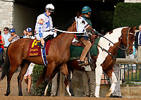 """October 07, 2018 : #14 Pradar and jockey Jack Gilligan before the 28th running of The Dixiana Bourbon (Grade 3) $250,000 """"Win and You're In Breeders' Cup Juvenile Turf Division"""" for trainer Todd Pletcher and owner Eclipse Thoroughbred and Robert LaPenta at Keeneland Race Course on October 07, 2018 in Lexington, KY.  Candice Chavez/ESW/CSM"""