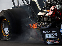 Mar 15, 2014; Gainesville, FL, USA; NHRA top fuel dragster driver Terry McMillen slides to a stop after blowing a tire after an engine explosion during qualifying for the Gatornationals at Gainesville Raceway Mandatory Credit: Mark J. Rebilas-USA TODAY Sports