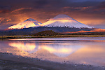 Payachata volcanoes, Lauca National Park, Chile