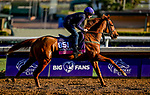 October 30, 2019: Breeders' Cup Juvenile Fillies Turf entrant Albigna, trained by Mrs. John Harrington, exercises in preparation for the Breeders' Cup World Championships at Santa Anita Park in Arcadia, California on October 30, 2019. Scott Serio/Eclipse Sportswire/Breeders' Cup/CSM