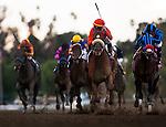 Jimmy Creed with Garrett Gomez aboard wins the Malibu Stakes at Santa Anita Park in Arcadia, California on December 26, 2012.